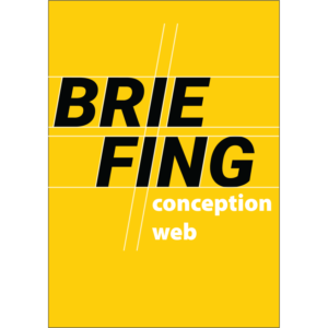 Briefing conception Web – white label – Word, 10p.